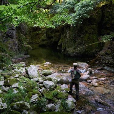 渓流と釣りの魅力